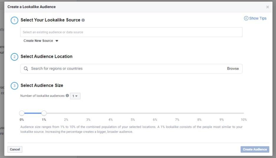 Datos de las audiencias personalizadas en Facebook